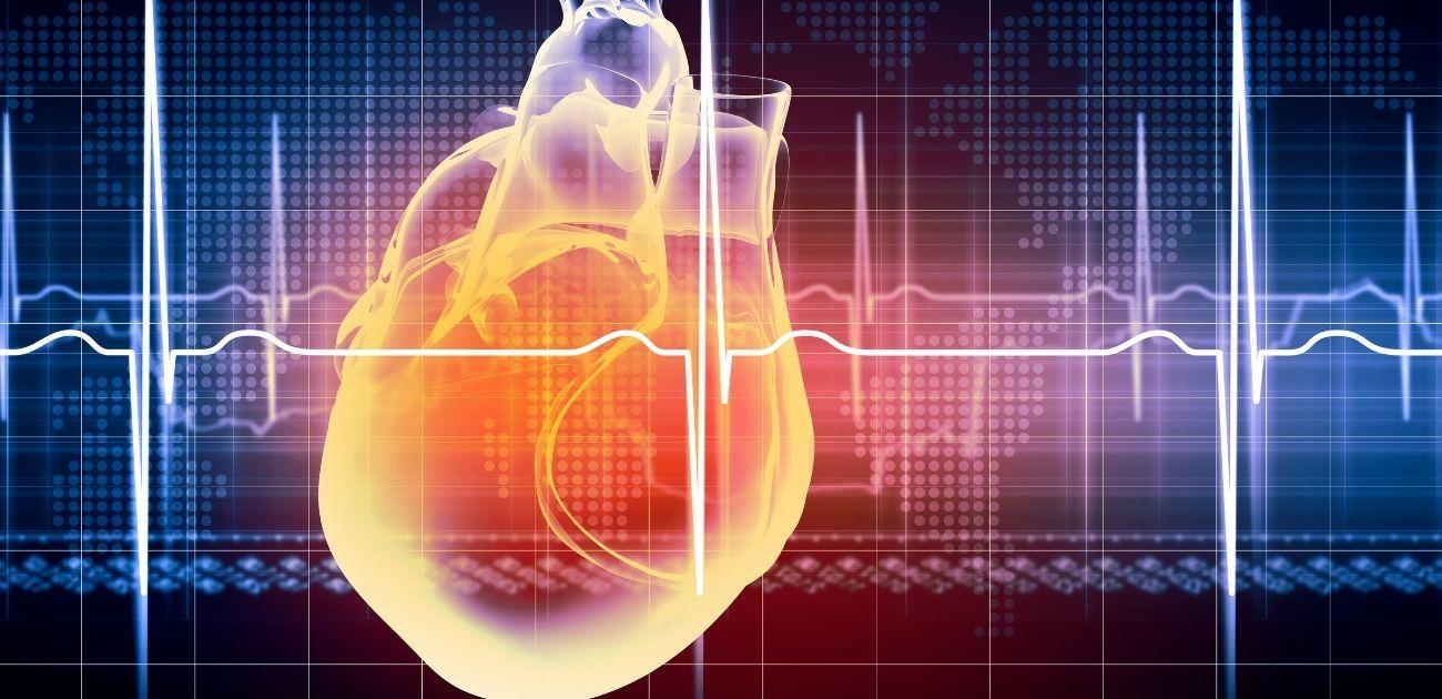 The-heart-wont-wait-